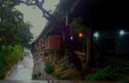 Barrio Los Chaguaramos